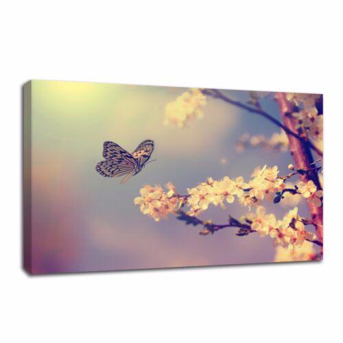 Modern Canvas Print Painting Wall Art Butterflies cherry blossoms Home Decor