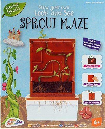 Bean Sprout Maze Kids Childrens Gardening Grow Your Own Plant Kit Box Gift New