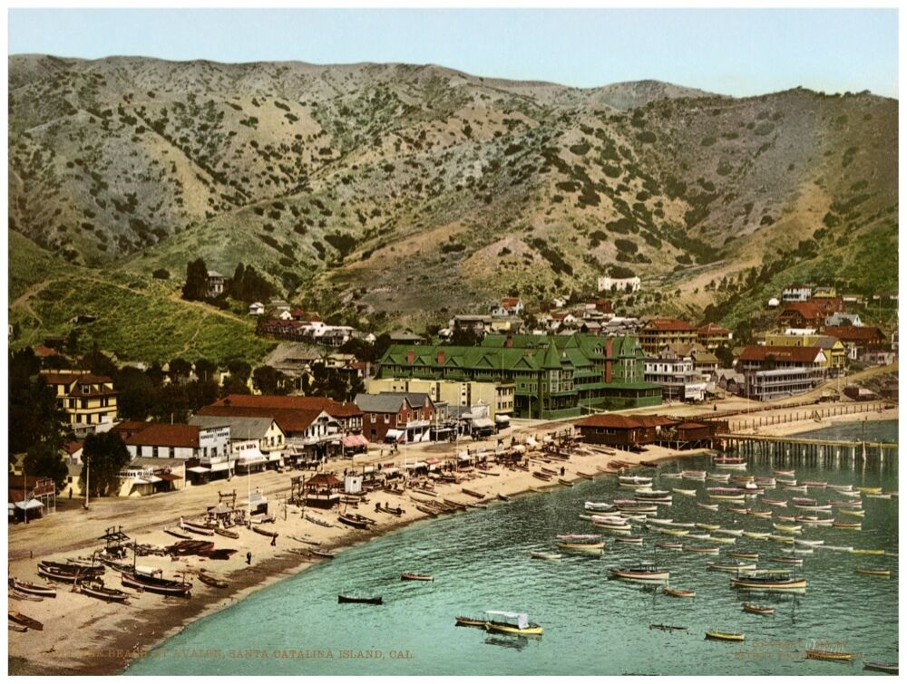 8893.Santa catalina island.bay.fishing boats.POSTER.art wall decor graphic art