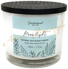 Scentsational Stress Relief Wild Mint /& Eucalyptus  Natural Soy Candles 26 oz