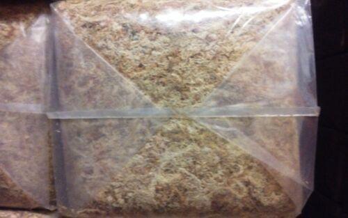 3 Kg Peruvian Sphagnum Moss 3A long fiber.