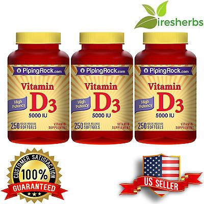 Vitamin Supplements Absorption