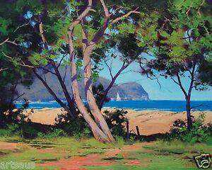 where is patonga beach