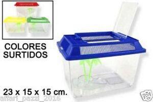 Tartarughiera rettilario teca insetti media ferplast for Tartarughiera acqua