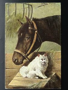 Horse-amp-Dog-Theme-PORTRAIT-of-HORSE-amp-DOG-c1905-Postcard-by-Hildesheimer-amp-Co