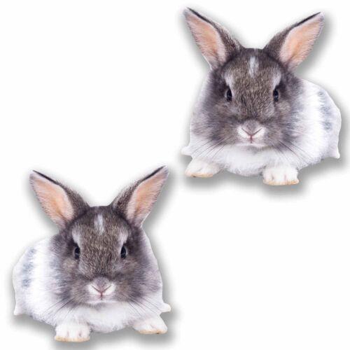 2 x 10cm mignon lapin stickers autocollant voiture tablette ordinateur portable enfants Filles Animal # 9682