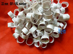White Chicken Leg Bands 22mm Chicken Rings 001-100 Numbered