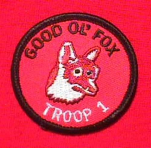 BUFFALO PATROL Wood Badge Cub Boy Scout Patch CSP