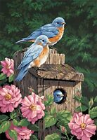 Dimensions Needlecrafts Paintworks Paint By Number, Garden Bluebirds , New, Free on sale