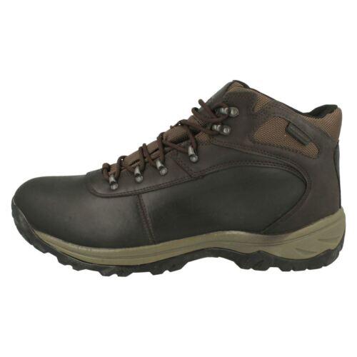 Uomo Mnot4410004 Marrone Stivaletti Bassi con Lacci da Ozark Trail