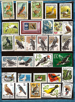Raptors,waterfowl,various 222t4 Excellent Quality Russia The Birds Hungary