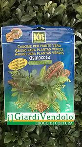 KB-OSMOCOTE-concime-Tablet-piante-verdi-A-LENTA-CESSIONE-25pezzi