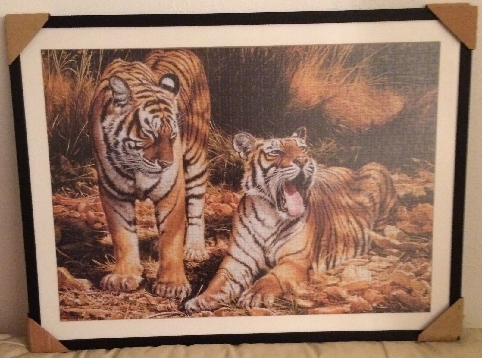 Framed TIGER jigsaw 36 pieces by 28 pieces L@@K