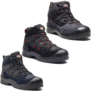 Dickies-Everyday-Safety-Boots-Mens-Steel-Toe-Cap-Anti-Scuff-Toe-Heel-UK6-14