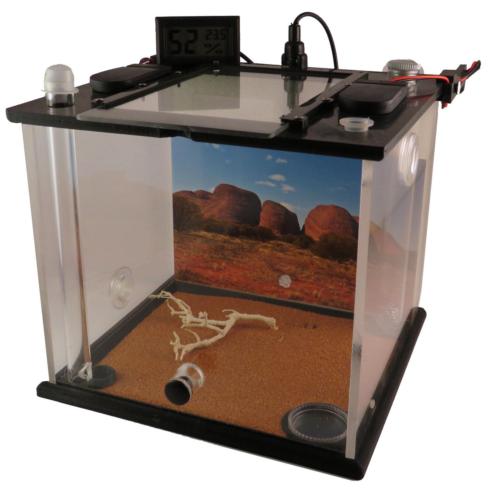 ANT Farm   Starter Kit, formicarium, terrario, Formica Cube, mediumdesert, Regalo