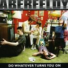 Aberfeldy Do Whatever Turns You on CD European Rough Trade 2006 12 Track in