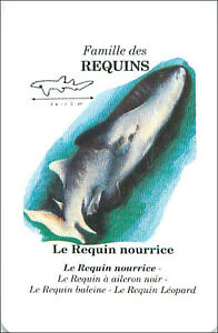 PLAYING-CARD-CARTE-A-JOUER-Ginglymostomatidae-Requin-Nourrice-Nurse-Shark