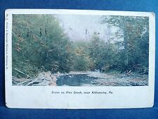 Postcard PA Scene on Pine Creek near Kittanning 1908