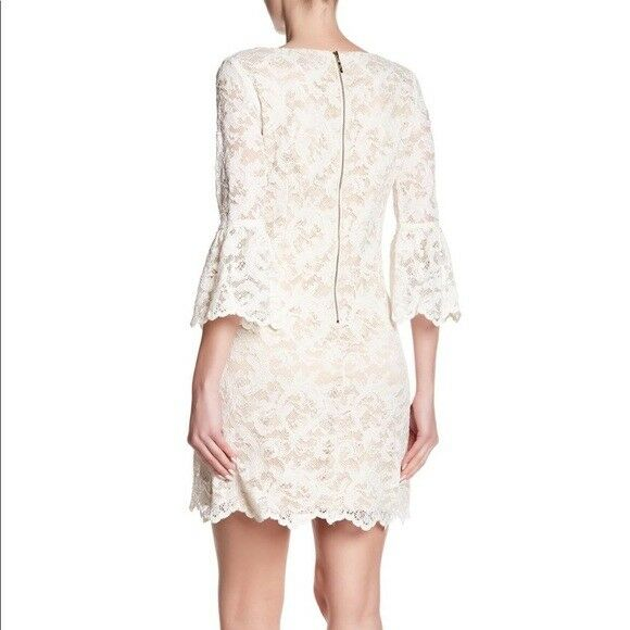 Eliza J Bell Sleeve Lace Dress    (size 12) 781b22