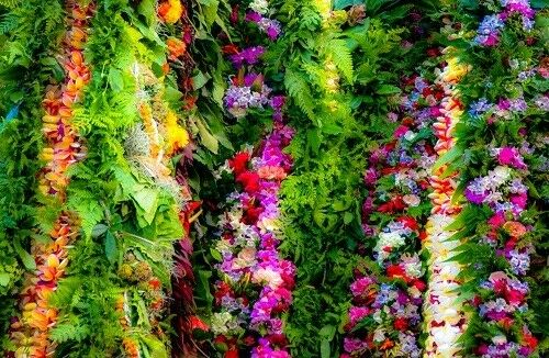 Hawaii Flower Lei - Tropical Flowers Print on Canvas