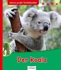 Der Koala von Valerie Tracqui (2012, Gebundene Ausgabe)