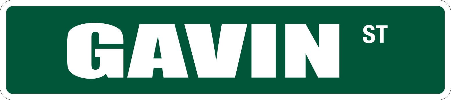 "*Aluminum* David 4/"" x 18/"" Metal Novelty Street Sign  SS 1091"