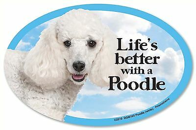 """Life/'s better with a Chow Chow  6/"""" x 4/"""" Oval Dog Magnet for Cars /& Refrigerators"""