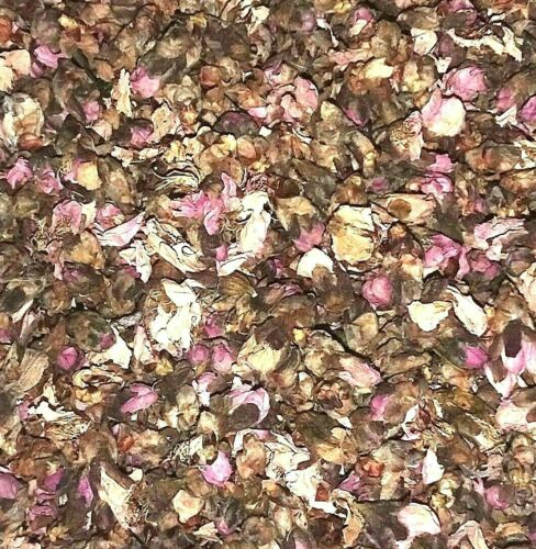 Prunus persica Apothecary Wicca Tea Herb Organic Dried Peach Tree Flowers