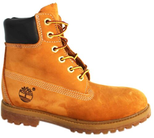 pollici 6 da Stivali donna Earthkeepers Pelle 10361 D40 Ek Lace Timberland marrone Up dC1dYTXqw