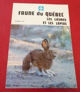French-Booklet-Faune-du-Quebec-Les-Lievres-et-les-Lapins-No-10-Hare-Rabbit