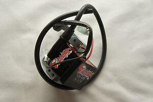 Estator KZ completamente encendido Ignition estator rotor bobina dmon 00131282 Racing