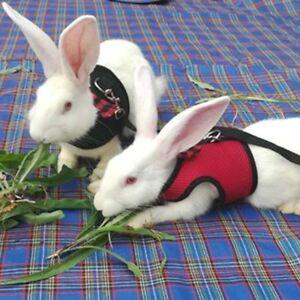 Hamster-Rabbit-Harness-Walk-Lead-Leash-Set-Ferret-Guinea-Pig-Animal-S-M-L-FAC