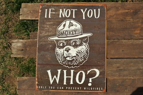 Only YOU Can Prevent Forest Fires Smokey the Bear If Not You Tin Metal Sign