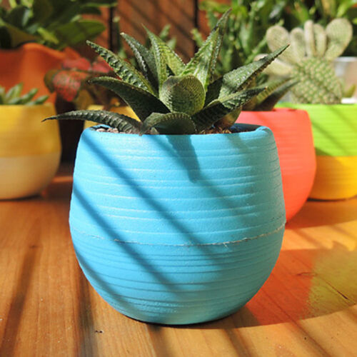 Mini Colourful Plastic Flower Pot Succulent Plant Flowerpot Home Office Decor