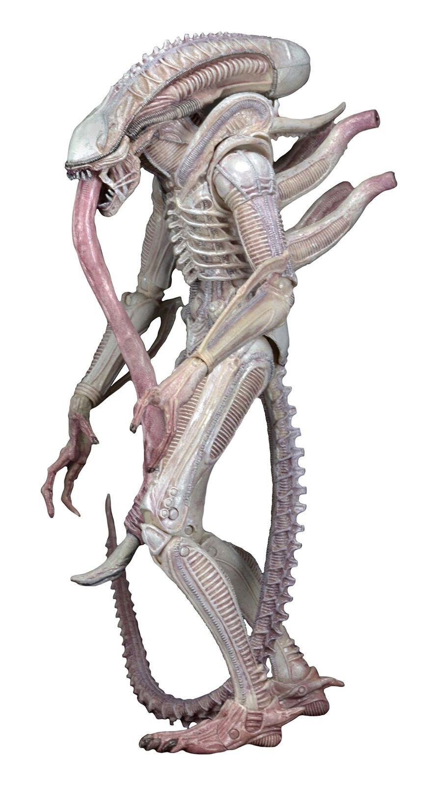 Concept Albino Alien (Aliens) NECA 7 Inch Series 9 Figure