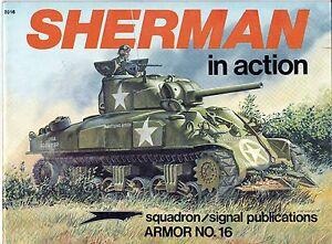 sherman in action - Italia - sherman in action - Italia