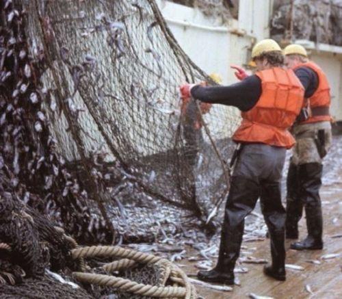 WATSTIEFEL echte GUMMI Naturkautschuk  RUBBER Watthose  Anglerhose Teichhose