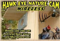 Monitoring Camera For Birdhouse , Cam Wireless Wildlife Observe Pet Supplies on sale