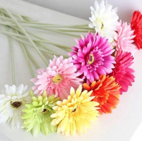 USA-99PCS Fresh Artificial Gerbera Flower seeds Chrysanthemum Daisy Mix Color