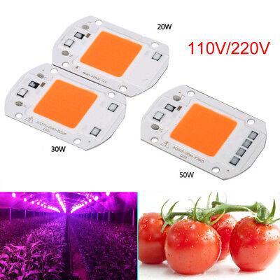 110v 220v Led Cob Grow White Chip Lens Reflector 50w 30w