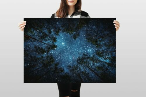 A1Night Sky Poster Art Print 60 x 90cm 180gsm Forest Wild Camping Gift #8595