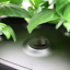 AeroGarden Plant Spacer Kit ~ Compatible With All Models ~ 25 Pack