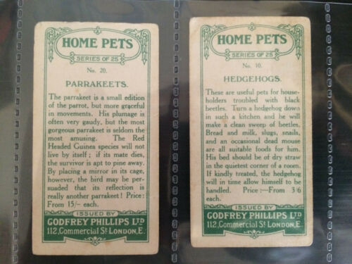 *PICK THE CARDS YOU NEED* HOME PETS 1924 FILLERS GODFREY PHILLIPS