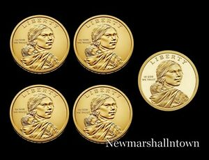 2019-P-D-S-Native-American-Sacagawea-Mint-Proof-Set-Pos-A-B-from-Mint-Rolls