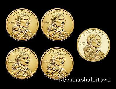 2019 P Native American Sacagawea Dollar ~ Pos A ~ In Mint Wrap from Mint Set