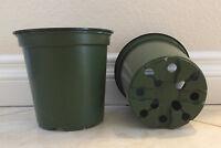 1 gallon 6in plastic nursery garden pots ( Lot of 100 )