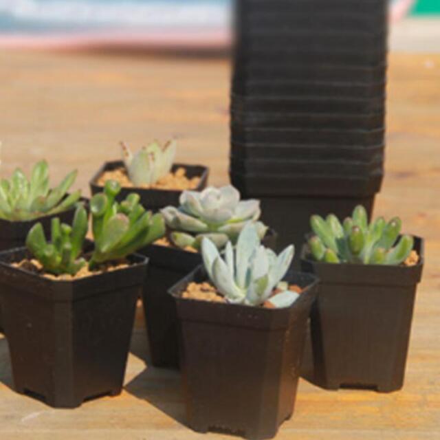 10x Black Mini Plastic Plant Flower Pot Planter For Home Office Nursery Garden