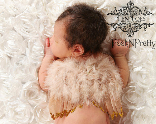Natural Feather Angel Butterfly Wings, Newborn, Baby, Photo prop CHOOSE Colors