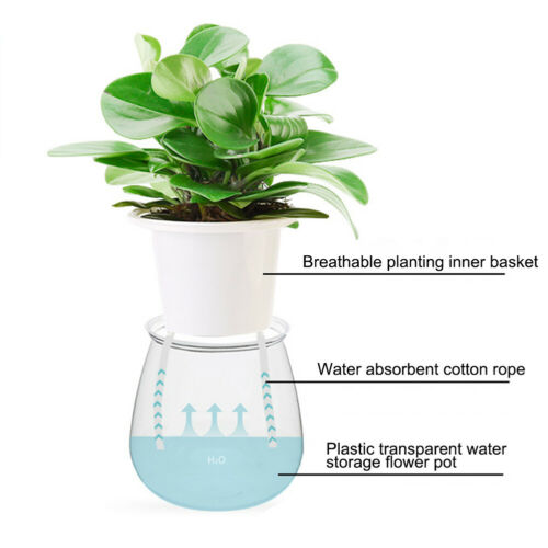 Self Watering Plant Flower Pot Water Container Plastic Planter Garden Tool Goody