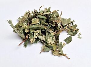 Details about sidr leaves lote 100g Dried Herbal Grade A Premium Ruqyah  evil eye